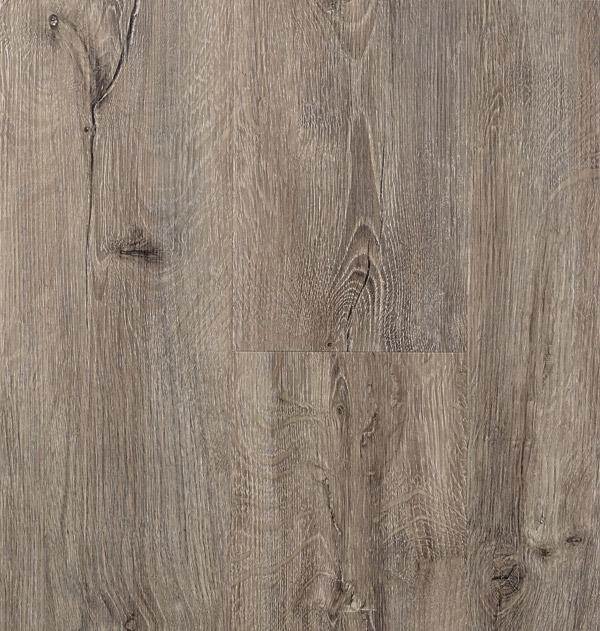 Talpa Oak